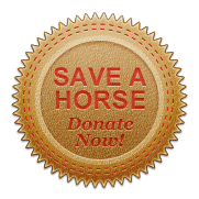 DonateBadge_leather_redstitch