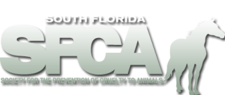 South Florida SPCA