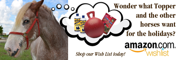 WishList_homepage