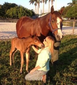 Laurie_foal