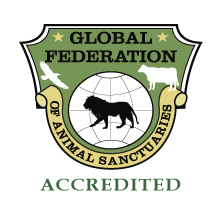 GFAS_Accredited