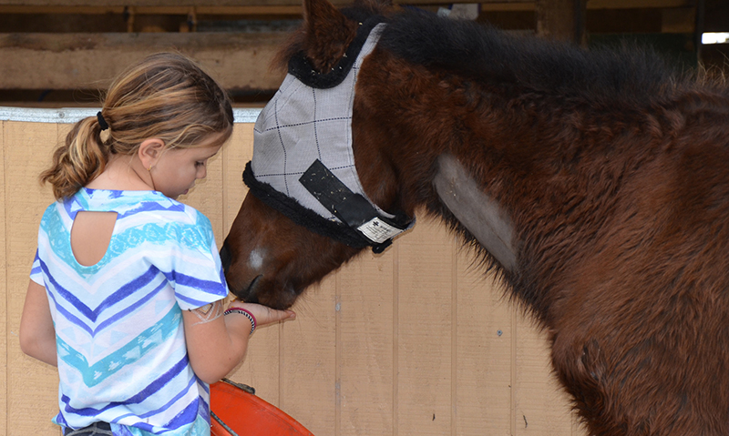 A young SFSPCA volunteer helps nurse Amazing Grace back to health. Photo ©South Florida SPCA Horse Rescue.
