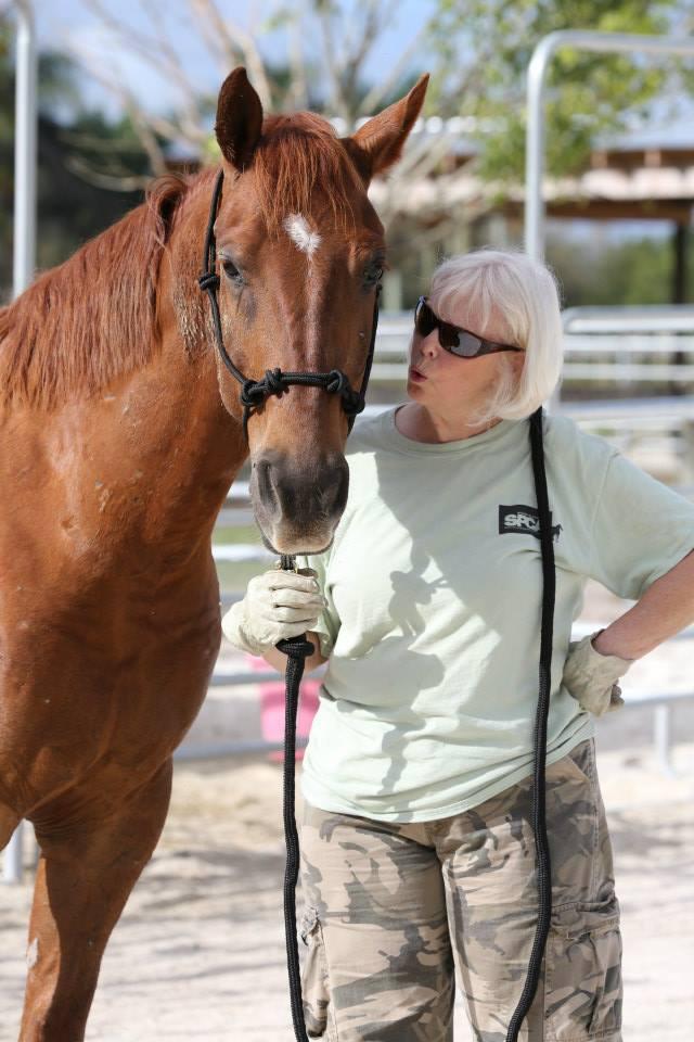 Carolin horse whispering Chex