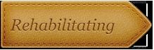 Leather_Rehabilitating_Script_arrow