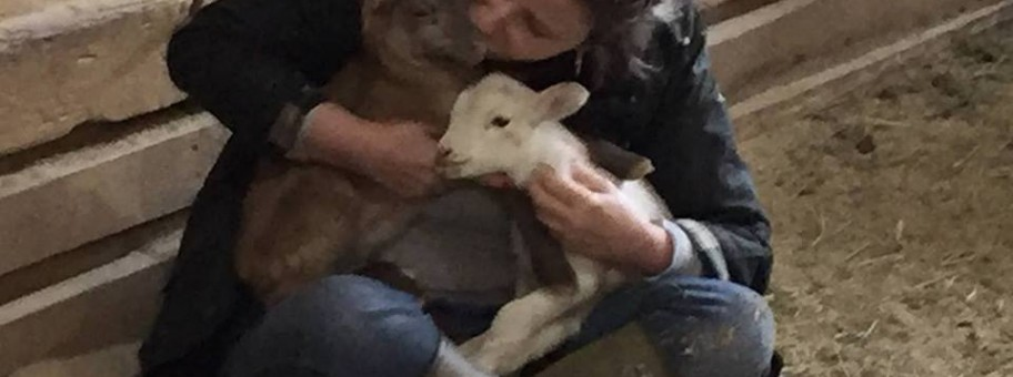 SFSPCA Board Member Kathryn Amoroso with the newborn lambs