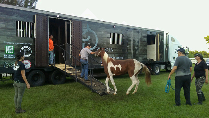 Loading up for Ocala_09082017_©South Florida SPCA