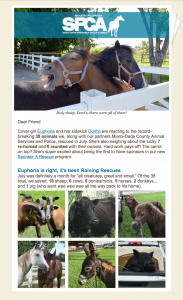SFSPCA-Aug2018-eNews-Cover