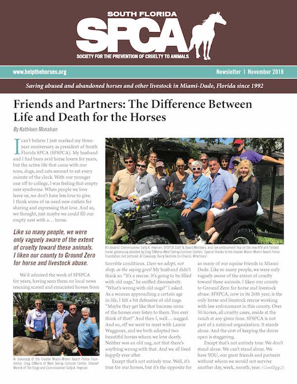 SFSPCA-Newsletter_Nov2018_Cover