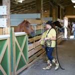 South-Florida-SPCA-Farm-to-Stable-DSC08475