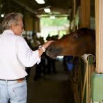 South-Florida-SPCA-Farm-to-Stable-DSC08497