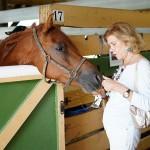 South-Florida-SPCA-Farm-to-Stable-DSC08516