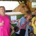 South-Florida-SPCA-Farm-to-Stable-DSC08523