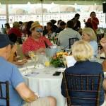 South-Florida-SPCA-Farm-to-Stable-DSC08546