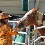South-Florida-SPCA-Farm-to-Stable-DSC_7704