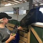 South-Florida-SPCA-Farm-to-Stable-IMG_1308